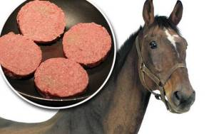 horse-meat